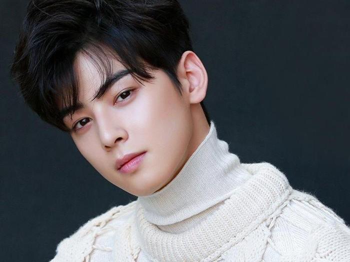 Biodata Cha Eun Woo